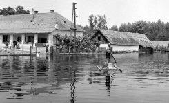 1965 - Az évszázad árvize - VIDEO- Gráfel Lajos képgyűjteménye